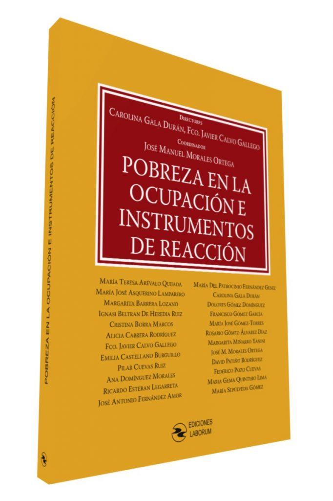 Pobreza en la ocupación e instrumentos de reacción